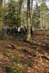 winterse wandeling door het Sint Anthonisbos Gemertseweg/Peelvenweg bij de IVN-vlag Gemertseweg Oploo